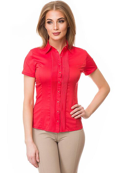 Рубашка за 1950 руб.