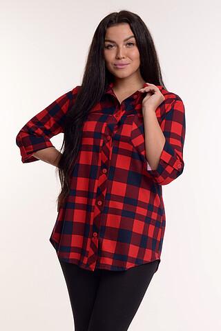 № 232/3  Рубашка MODELLINI