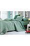 Комплект постельного белья #72151. Вид 1.